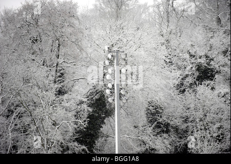 Floodlights at Withdean Stadium blend in with snow laden trees in Brighton UK - Stock Photo