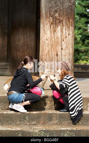Deer roam free in Central Nara. The grounds of Kofukuji Temple Nara prefecture Japan - Stock Photo