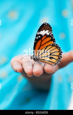 Striped tiger butterfly (Common tiger butterfly)  on the hand of an Indian girl - Stock Photo