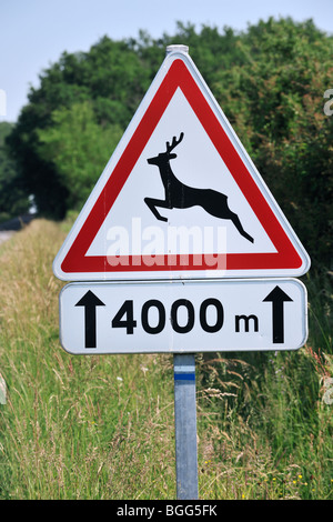 Warning sign / Traffic sign for deer crossing the road in rural landscape - Stock Photo
