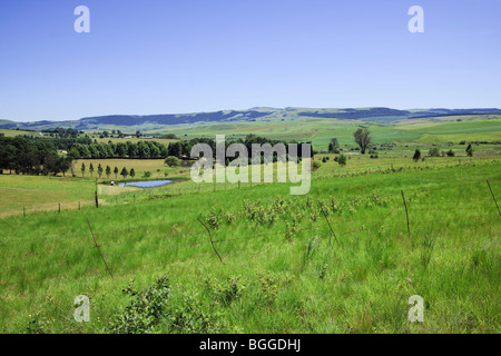 Green pastures with dam in the Drakensberg foothills, Midlands, Kwazulu Natal, South Africa. Color. - Stock Photo