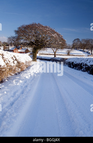 Country lane covered in snow, Warwickshire - Stock Photo