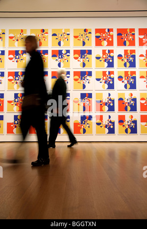 Samurai Tree Invariants, Gabriel Orozco, MOMA, New York City - Stock Photo