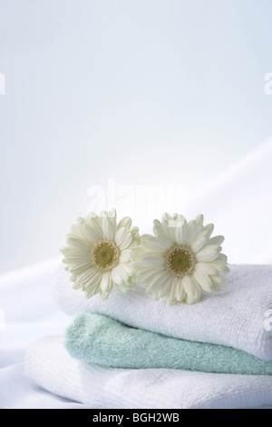 Gerberas on a stack of towels - Stock Photo