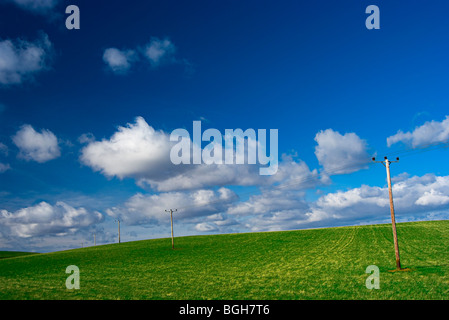 A Scottish hillside with telegraph poles on a summers day with blue skies and fluffy clouds - Stock Photo