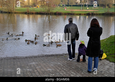 Adults and children looking and feeding ducks in Parthenay Deux-Sevres France - Stock Photo