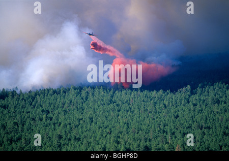 Air tanker plane drops slurry on forest fire, Leroux Fire, Coconino National Forest, near Flagstaff, Arizona - Stock Photo
