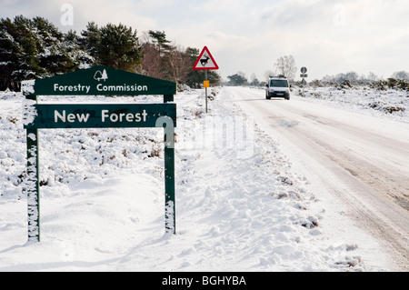 New Forest Hampshire in the Snow, taken near Stony Cross Hampshire England - Stock Photo