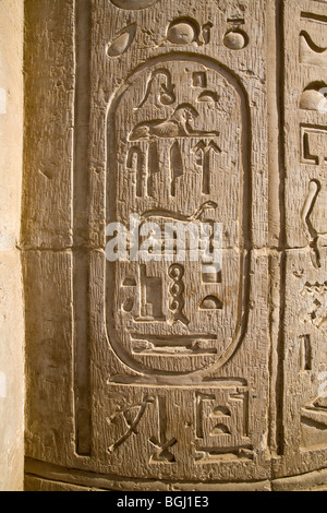 Cartouche of Ptolemy IX (Soter II) on pillar at the Temple of Haroeris and Sobek at Kom Ombo in the Nile Valley, - Stock Photo