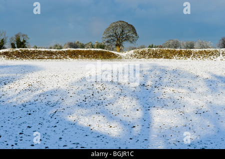 Giant's Ring, Belfast, covered in snow - Stock Photo