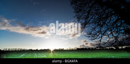 Sun set over a winter field - Stock Photo