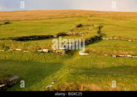 Brough of Birsay on the Mainland Orkney site of early Norse and Pictish Settlements  SCO 5858 - Stock Photo