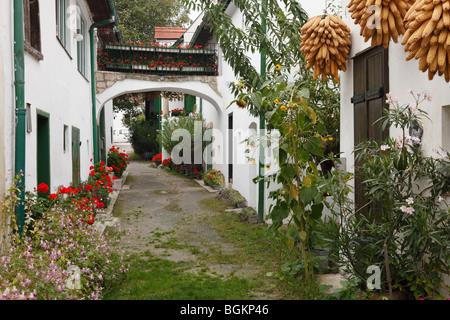 Alley in Moerbisch am See, Neusiedler See, Burgenland, Austria, Europe - Stock Photo