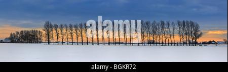 Winterlight in Groningen, December 2009. Between Winsum en Garnwerd - Stock Photo