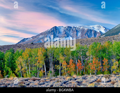Eastern Sierra Mountains with sunrise and fall colored aspens and snow. - Stock Photo