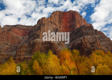 Lower Grand Canyon in autumn just above Lake Mead, Grand Canyon National Park, Arizona - Stock Photo