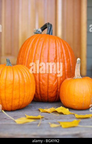 Fall pumpkins on porch - Stock Photo
