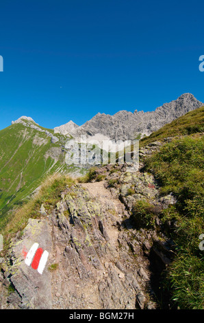 Path leading to the Prinz-Luitpold-House, Hintersteiner Valley, Bad Hindelang, Allgaeu, Bavaria, Germany, Europe - Stock Photo
