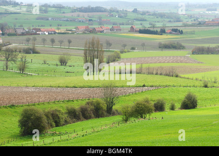 Bocage landscape with hedges and trees, Belgium - Stock Photo