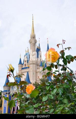 Cinderella's Castle in Magic Kingdom, Disneyworld, Orlando, Florida, USA - Stock Photo