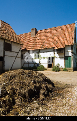 Dunghill / dungheap at the inner courtyard of traditional farm in the open air museum Bokrijk, Belgium - Stock Photo