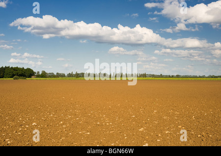 Ploughed field near Bourne, Lincolnshire, England - Stock Photo