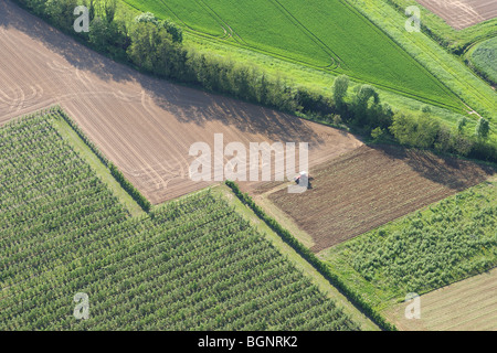 Tractor in agricultural area with fields, grasslands and hedges from the air, Belgium - Stock Photo