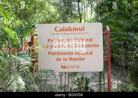 Calakmul Maya Ruins archaeology site, Campeche Mexico. - Stock Photo