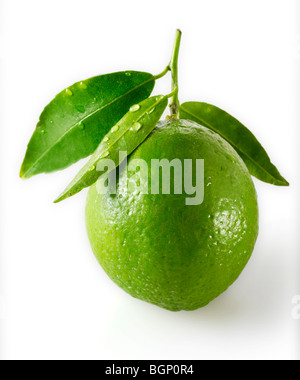 Fresh lime with leaves - Stock Photo
