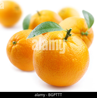 ripe oranges with leaves on white background - Stock Photo