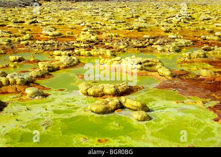 Sulfuric acid pond Dallol is a volcanic, danakil depression, ethiopia - Stock Photo