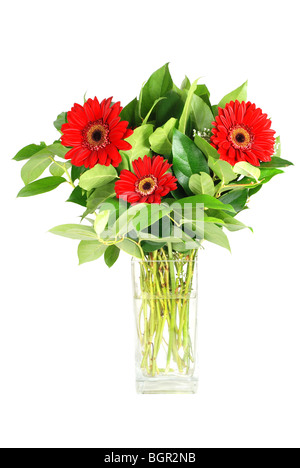 Gerbera flowers in a vase isolated - Stock Photo