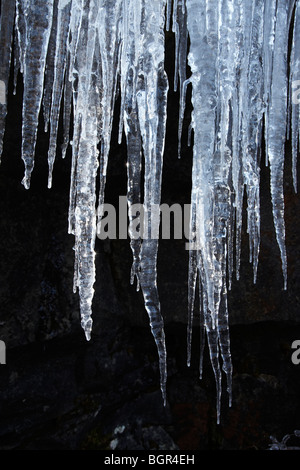 Icicles on the Trees and Rock faces at Pontneddfechan, along the River Nedd Fechan in the Neath Valley, South Wales, - Stock Photo