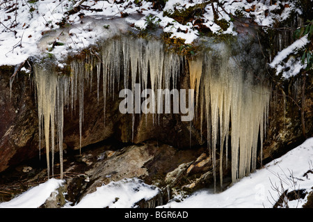 Dirty Icicles Illustrating Erosion in the Cherokee National Forest, tennessee - Stock Photo