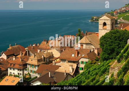 View at Saint-Saphorin at Lake Leman, UNESCO World Heritage site Lavaux, Vaud, Switzerland - Stock Photo