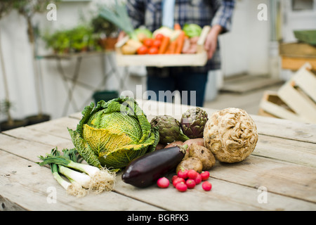 Farmer showing vegetables. - Stock Photo