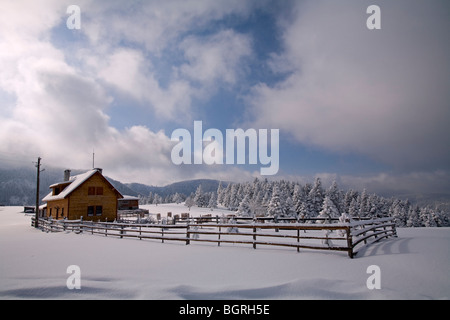 Winter scene from Duvenlik Yaylasi, Aladag Bolu Turkey - Stock Photo