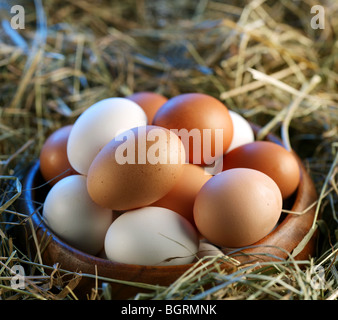 Chicken eggs in the straw in the morning light. - Stock Photo