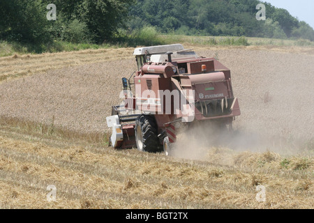 Harvester on a field in the summer, Heilbronn, Germany - Stock Photo