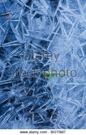 Close up of ice pattern in Rouge Park an urban wilderness in Toronto Ontario Canada - Stock Photo