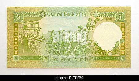 Syria 5 Five Pound Bank Note. - Stock Photo