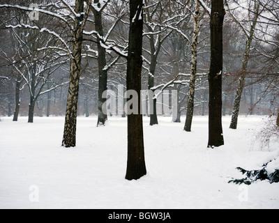 Snow covered parkland in Tiergarten Park in central Berlin in winter 2010 - Stock Photo