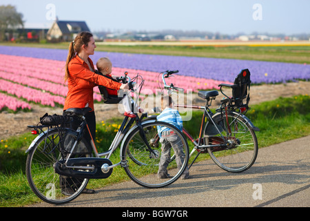 Family with two kids bicycling in dutch countryside. Tulip fields on background - Stock Photo
