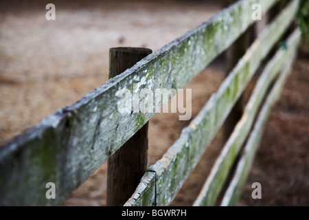 old wooden fence on a diagonal angle - Stock Photo