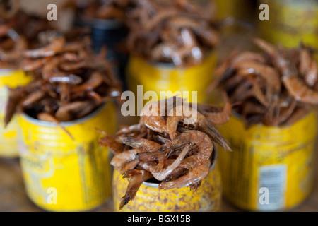 The Mercado Central in the Baixa district, dried shrimp, Maputo, Mozambique - Stock Photo