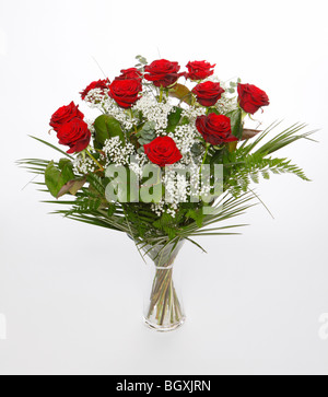 A dozen red roses for Valentines Day. Flowers on a white background - Stock Photo