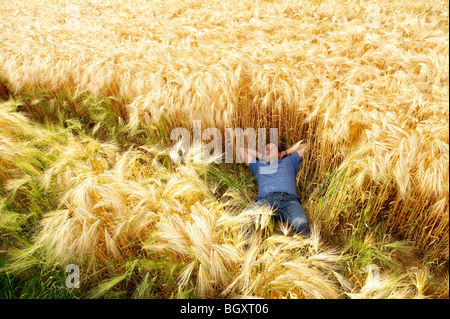 Man laying down in a wheat field - Stock Photo