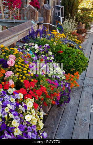 FLOWER POTS line the wooden walkway to HOUSE BOATS in SAUSALITO - SAN FRANCISCO BAY, CALIFORNIA - Stock Photo
