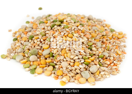 Mixed dried ingredients for soup and broth recipes - Stock Photo