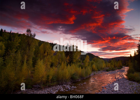Anthracite Creek with Fall colors at sunset along Kebler Pass Road, Colorado. - Stock Photo